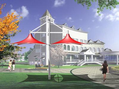 双水镇村道景观膜结构建设工程项目